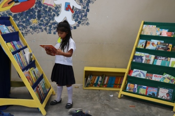 The Adrian Mejia School in El Progreso where we started a library