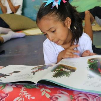 Las Lagunas Library